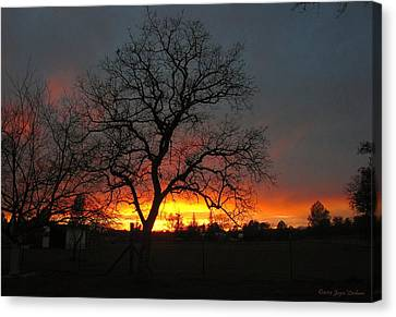 Sunset 02 18 13 Canvas Print by Joyce Dickens