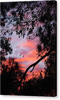Sunset 16 Canvas Print