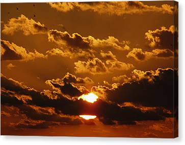 Sunset 5 Canvas Print
