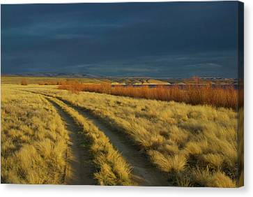 Sunset Above Flaming Gorge, Green Canvas Print by Timothy Herpel