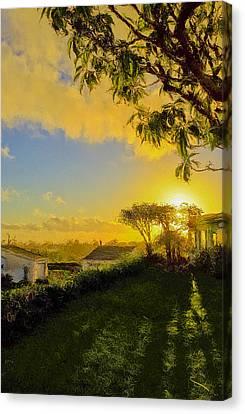 Sunset After Rain Canvas Print by SM Shahrokni