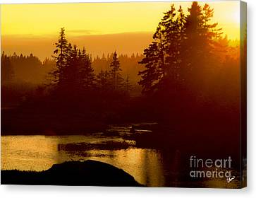 Sunset Canvas Print by Alana Ranney