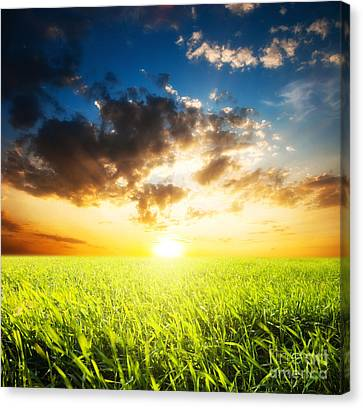 Sunset And Field Of Grass Canvas Print by Boon Mee