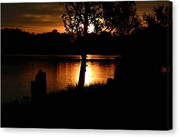 Sunset And Tree Canvas Print