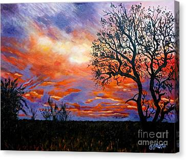 Sunset At Balule Canvas Print by Caroline Street