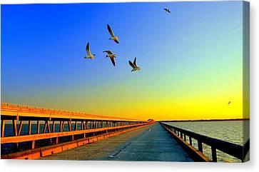 Sunset At Copano Bay Bridge Canvas Print by Antonia Citrino