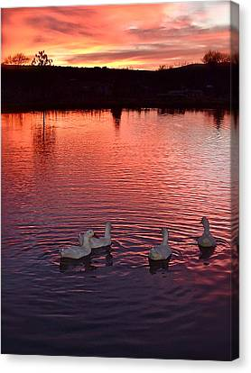 Sunset At Duckpond Canvas Print