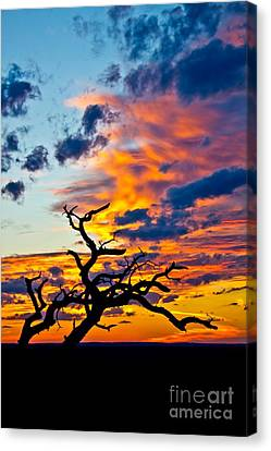 Sunset At Enchanted Rock Canvas Print by Michael Tidwell