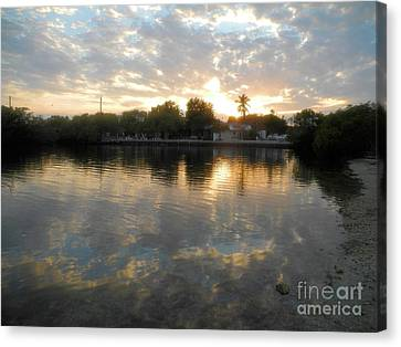 Pennekamp Canvas Print - Sunset At Pennekamp by Adam Jewell