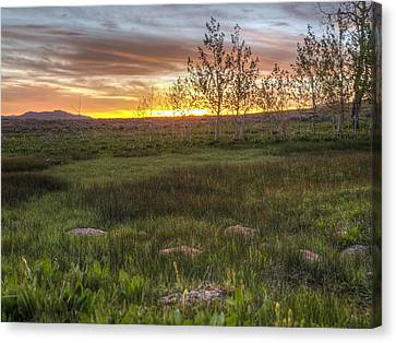Sunset At Sunflower Flats Canvas Print by Jenessa Rahn