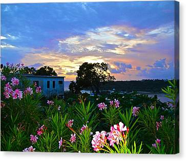 Sunset At Tasty's In Anguilla Canvas Print by Jennifer Lamanca Kaufman