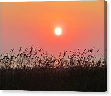 Canvas Print featuring the photograph Sunset At The Beach by Cynthia Guinn