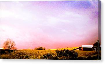Sunset At The Farm Canvas Print by Sara Frank