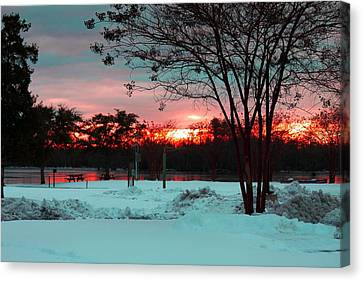 Sunset At The Park Canvas Print by Carolyn Ricks