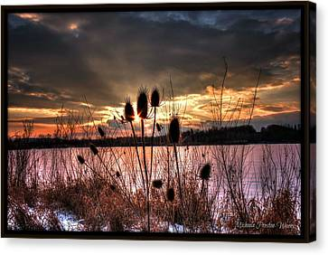 Canvas Print featuring the photograph Sunset At The Pond 4 by Michaela Preston