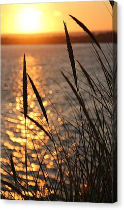 Canvas Print featuring the photograph Sunset Beach by Athena Mckinzie