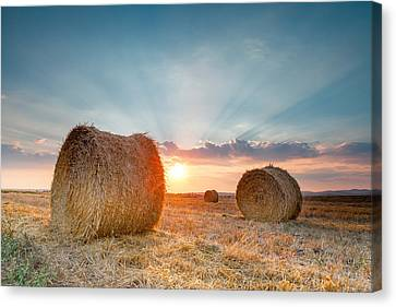 Sunset Bales Canvas Print by Evgeni Dinev