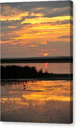 Sunset Beauty Canvas Print by Birches Photography