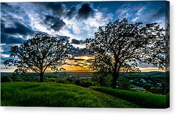 Sunset Between The Oaks Canvas Print by Randy Scherkenbach