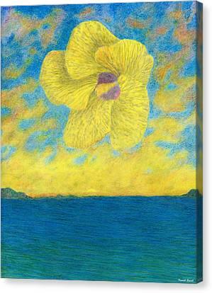 Sunset Blossom Canvas Print by Kenneth Grzesik