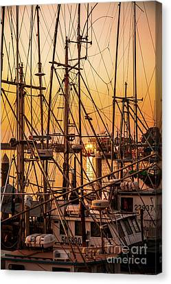 Sunset Boat Masts At Dock Morro Bay Marina Fine Art Photography Print Sale Canvas Print by Jerry Cowart