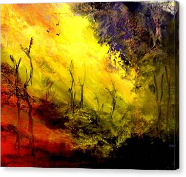 Sunset Burnt Landscape Canvas Print by Sandra Sengstock-Miller