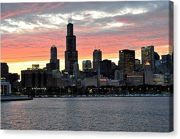 sunset Chicago Canvas Print by David Flitman