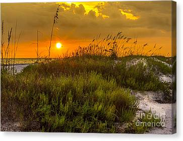 Sunset Dunes Canvas Print