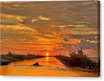 Sunset Everglades Canvas Print by Bob Mulligan