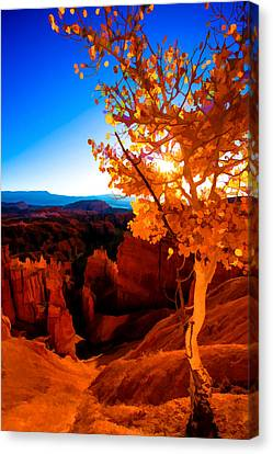 Hoodoos Canvas Print - Sunset Fall by Chad Dutson