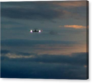 Sunset Flight Canvas Print by George Cousins