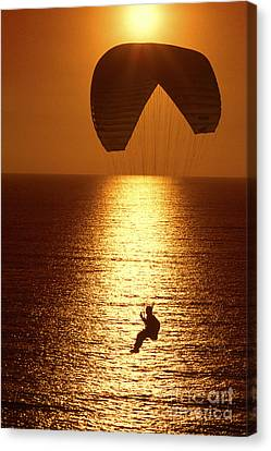 Sunset Flight Canvas Print by Paul W Faust -  Impressions of Light