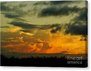 Sunset Glow Canvas Print by Lynda Dawson-Youngclaus