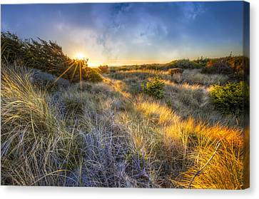 Sunset Glow On The Dunes Canvas Print by Debra and Dave Vanderlaan