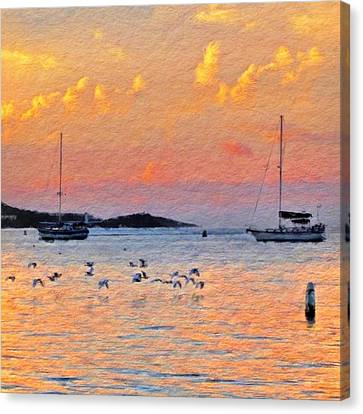Sunset Harbor With Birds - Square Canvas Print by Lyn Voytershark