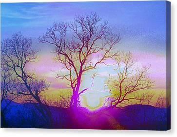 sunset I Canvas Print by Shirley Moravec