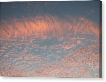 Canvas Print featuring the photograph Sunset In Gainesville by Lorna Maza