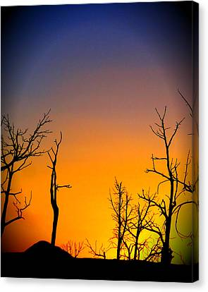 Sunset In Mesa Verde Canvas Print by Dan Sproul