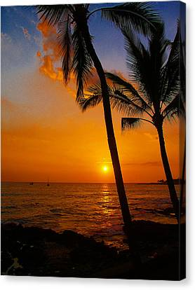 Sunset In Paradise Canvas Print by Athala Carole Bruckner