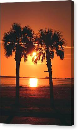 Sunset Canvas Print by Jennifer Burley