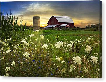 Sunset Lace Pastures Canvas Print by Debra and Dave Vanderlaan