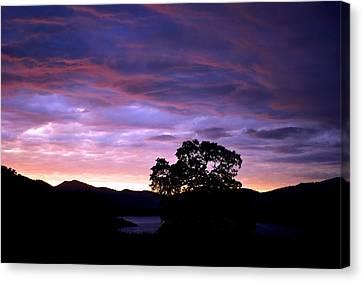 Sunset Lake Canvas Print by Matt Harang