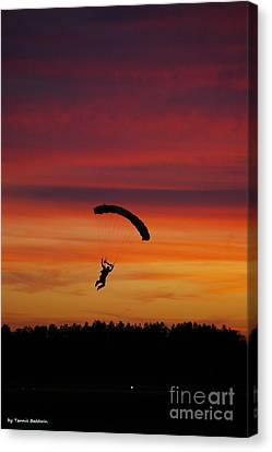 Canvas Print featuring the photograph Sunset Landing by Tannis  Baldwin