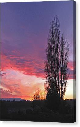 Canvas Print featuring the photograph Sunset by Laurie Stewart
