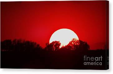 Sunset May Canvas Print