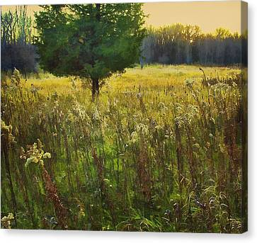 Canvas Print featuring the photograph Sunset Meadow by John Hansen