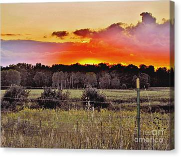 Sunset Meadow Canvas Print by Marilyn Smith