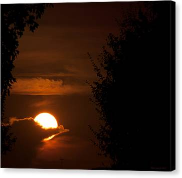 Sunset Canvas Print by Miguel Winterpacht