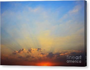 Sunset Canvas Print by Mohamed Elkhamisy