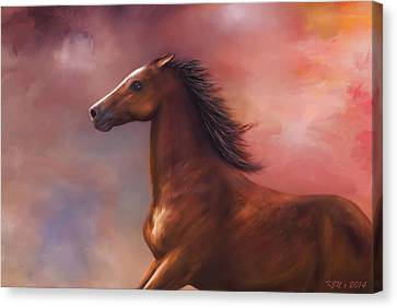 Sunset Mustang Canvas Print by Kari Nanstad